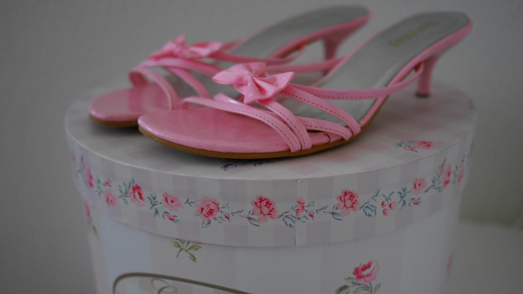 jurk antionette roze schoenen