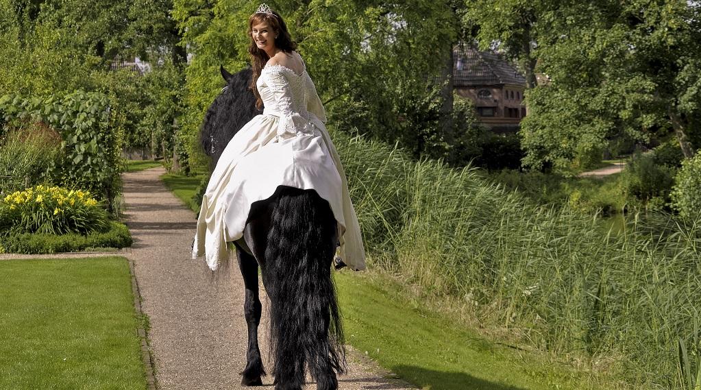 prinses paard